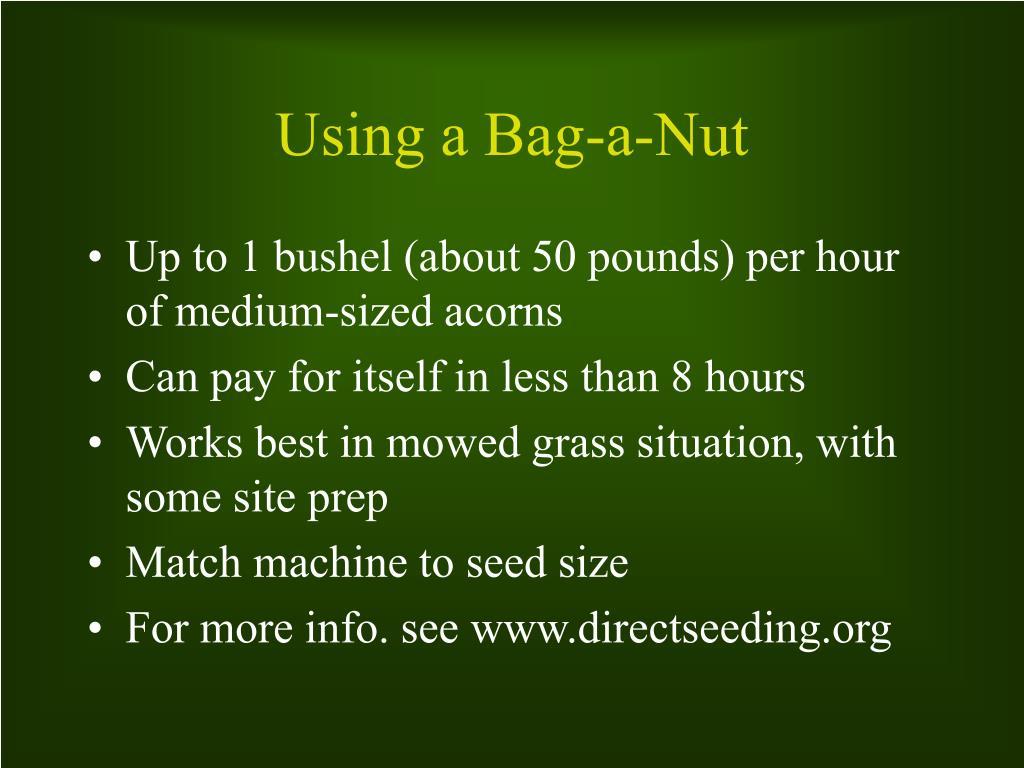 Using a Bag-a-Nut