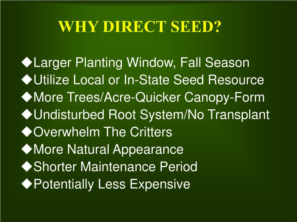WHY DIRECT SEED?