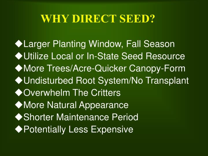 Why direct seed l.jpg