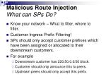 malicious route injection what can sps do