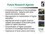 future research agenda