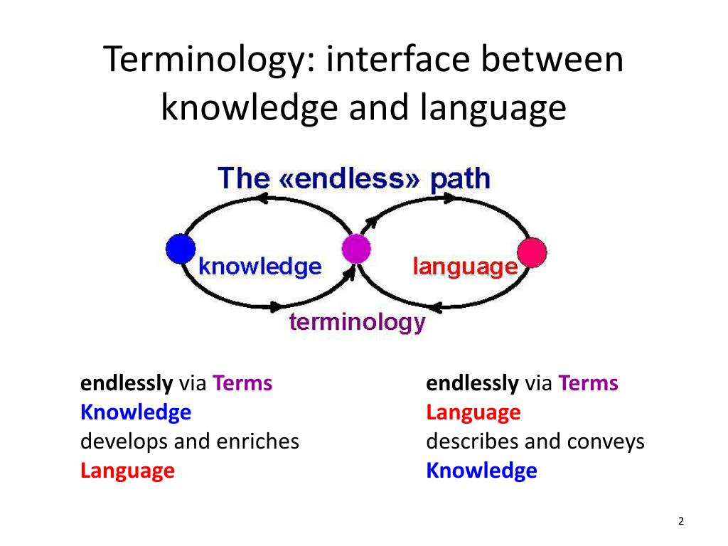 knowledge of the terminology essay Read this essay on theory of knowledge reflective come browse our large digital warehouse of free sample essays get the knowledge you need in order to pass your classes and more.