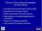 bureau of citizenship immigration services bcis