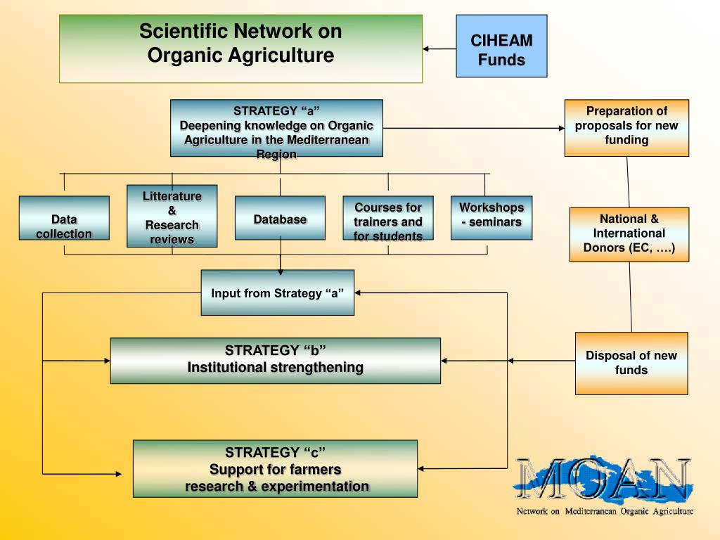 Scientific Network on