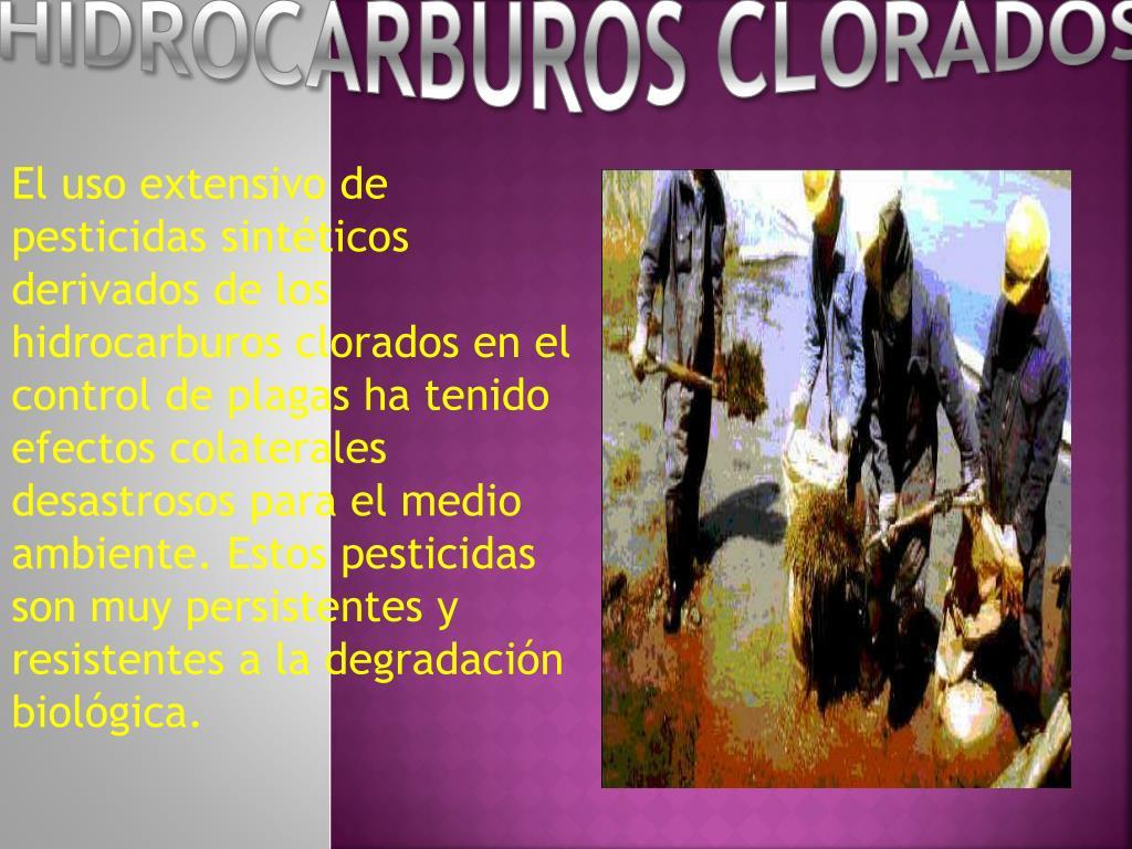 HIDROCARBUROS CLORADOS