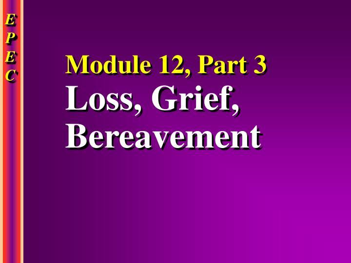 Module 12, Part 3