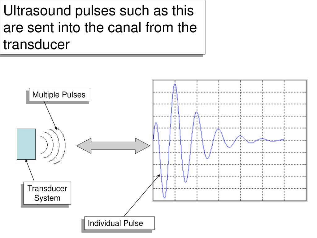Ultrasound pulses such as this are sent into the canal from the transducer