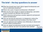 the brief the key questions to answer