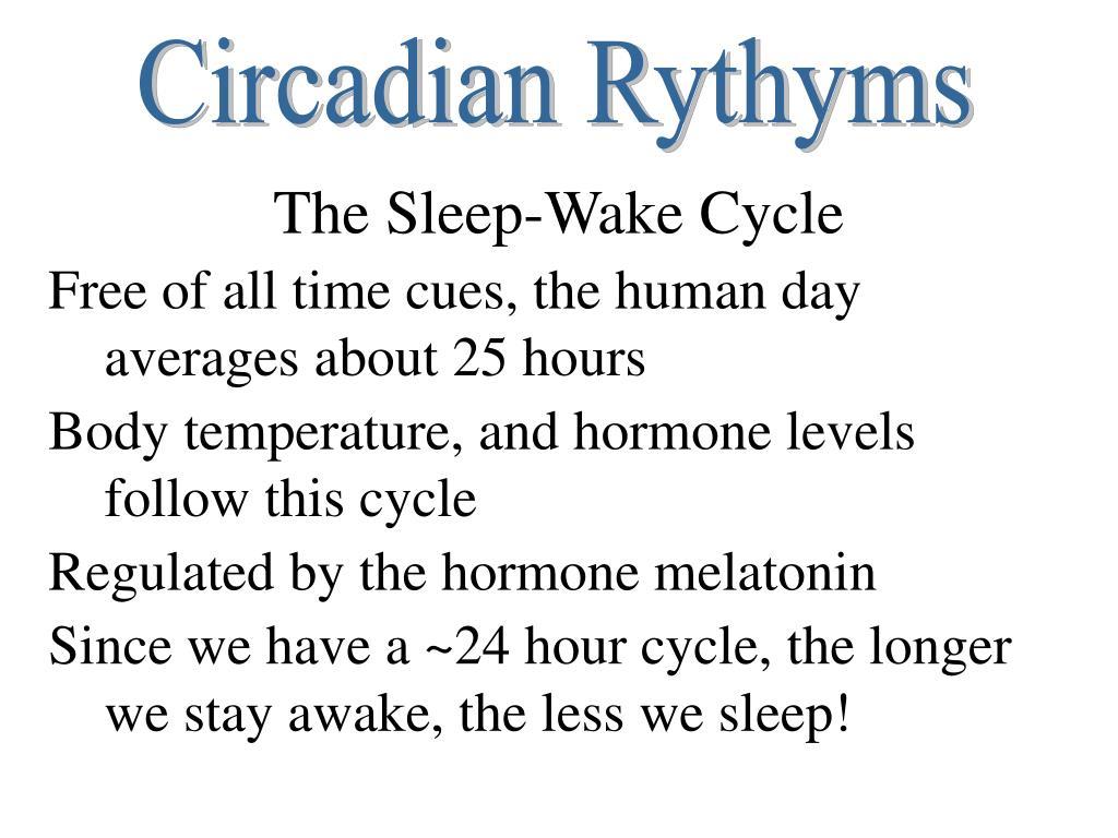 Circadian Rythyms