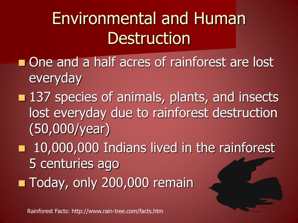 Environmental and Human Destruction