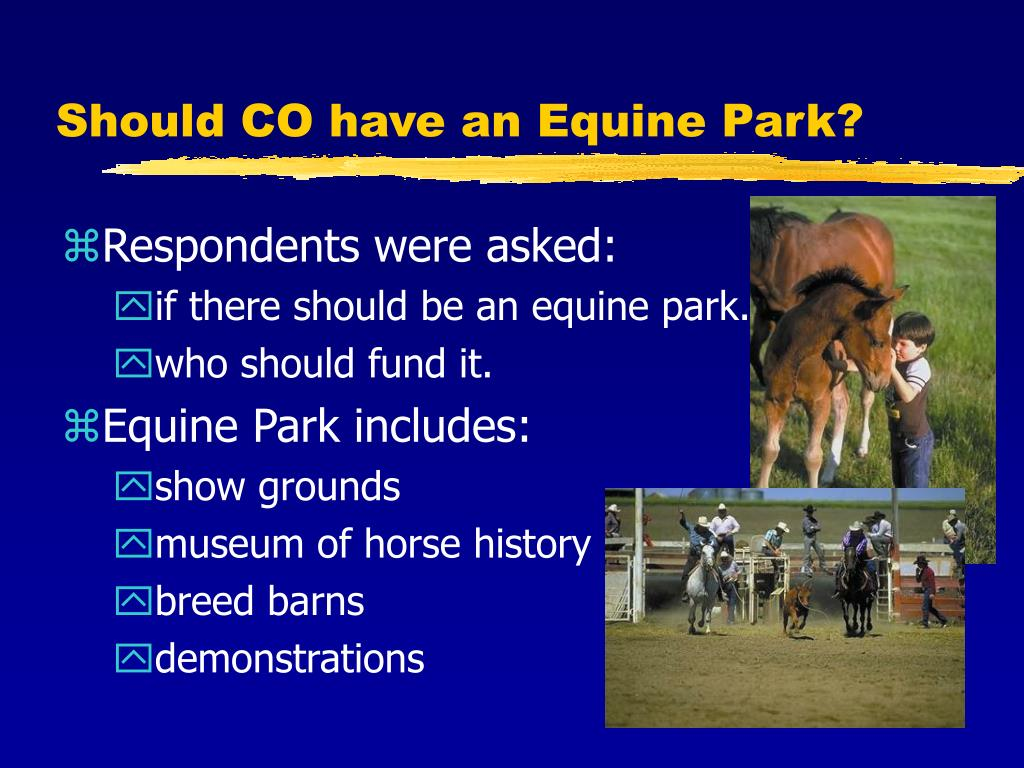 Should CO have an Equine Park?