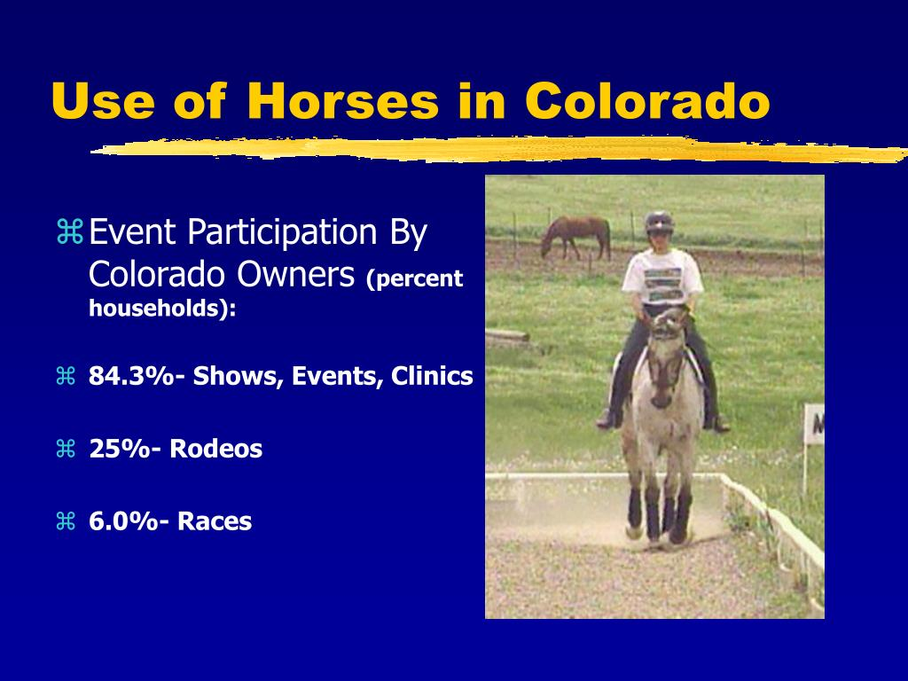 Use of Horses in Colorado