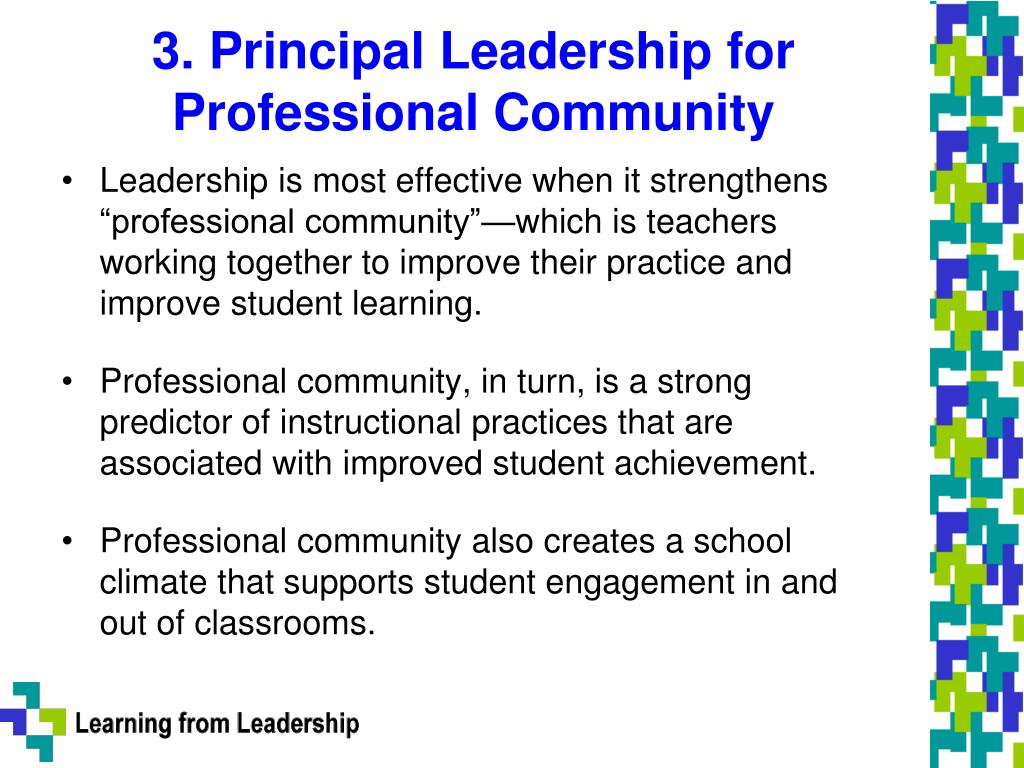 3. Principal Leadership for Professional Community