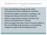 guidelines for learning organizations