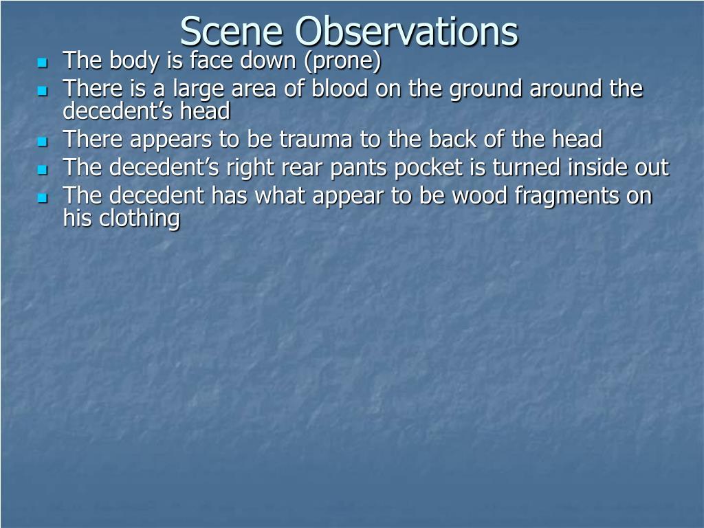 Scene Observations