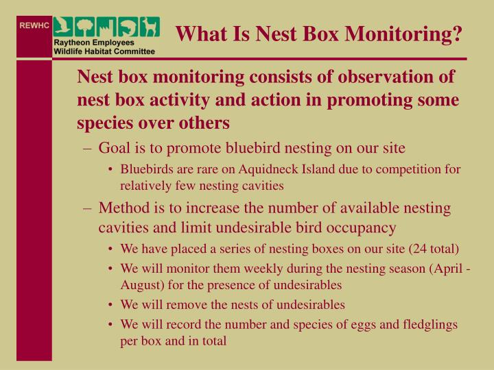 What is nest box monitoring
