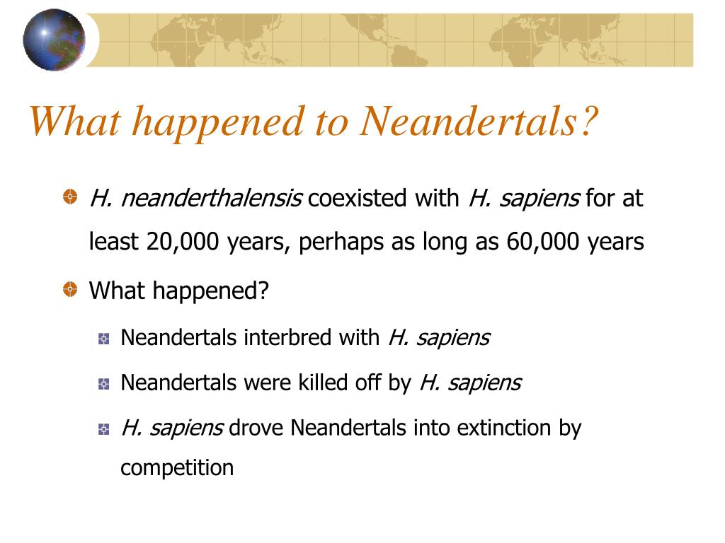 What happened to Neandertals?