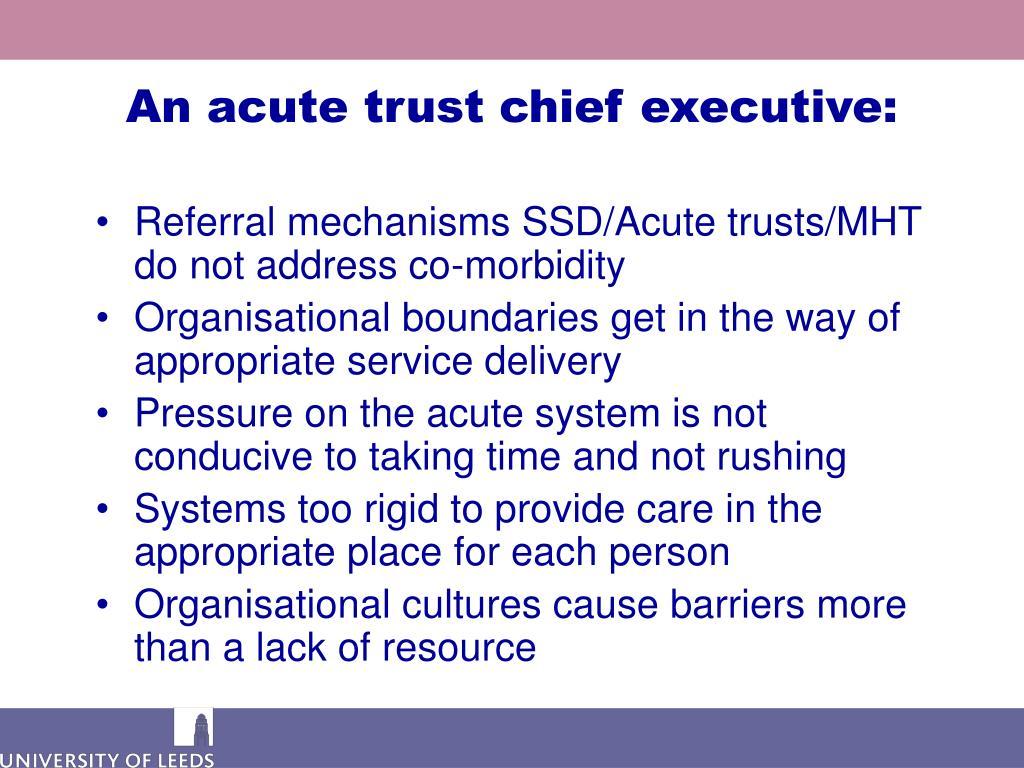 An acute trust chief executive: