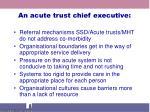 an acute trust chief executive