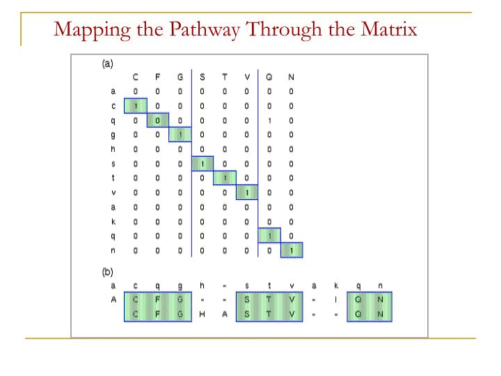 Mapping the Pathway Through the Matrix
