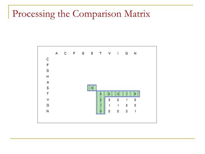 Processing the Comparison Matrix
