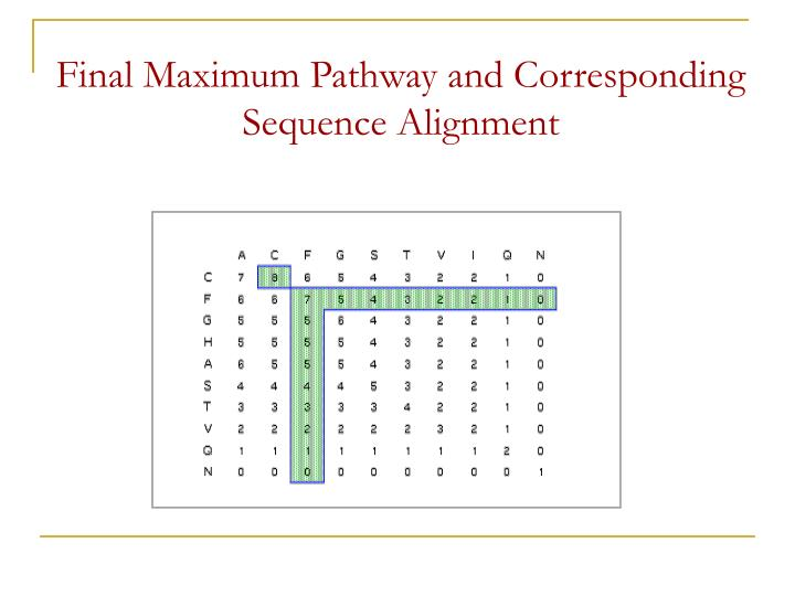 Final Maximum Pathway and Corresponding Sequence Alignment