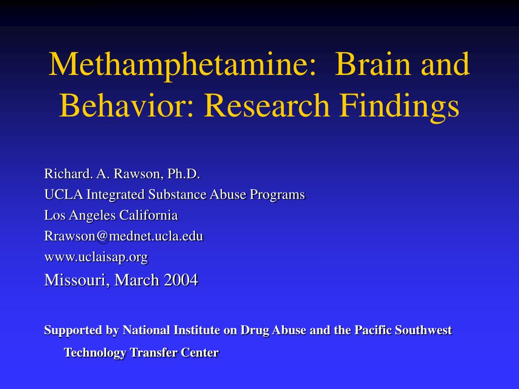 methamphetamine brain and behavior research findings