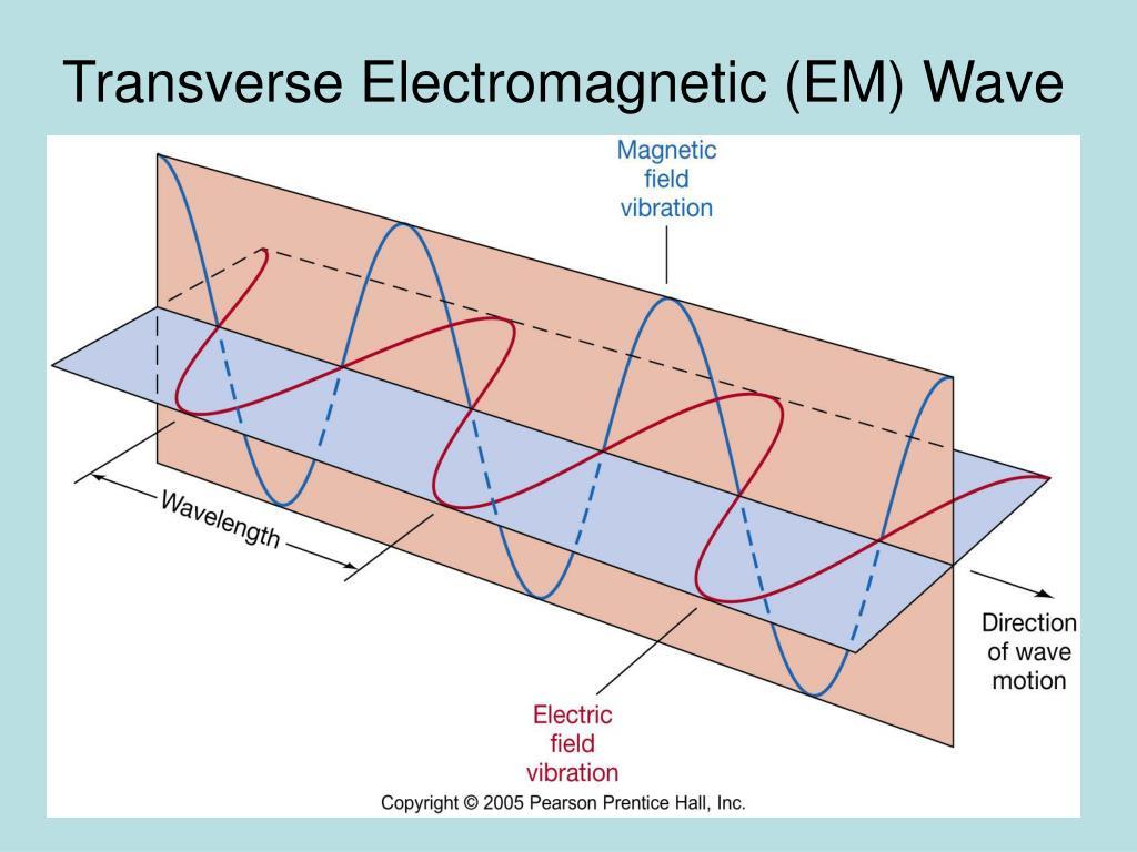 Transverse Electromagnetic (EM) Wave