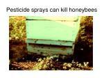 pesticide sprays can kill honeybees