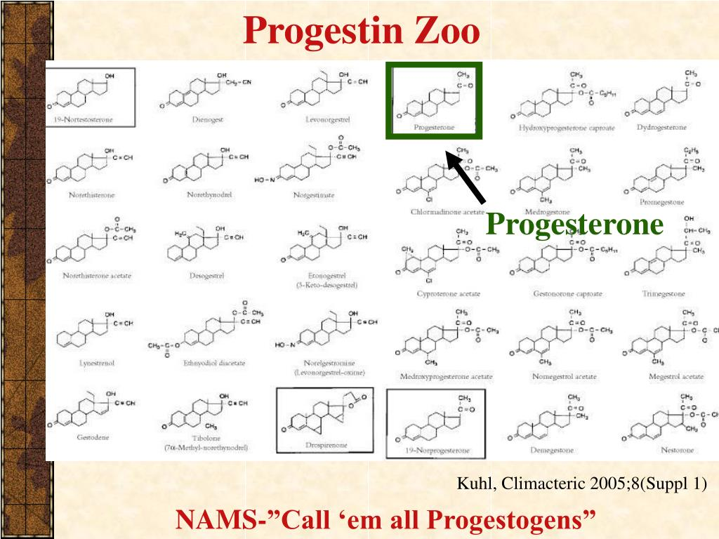 Progestin Zoo