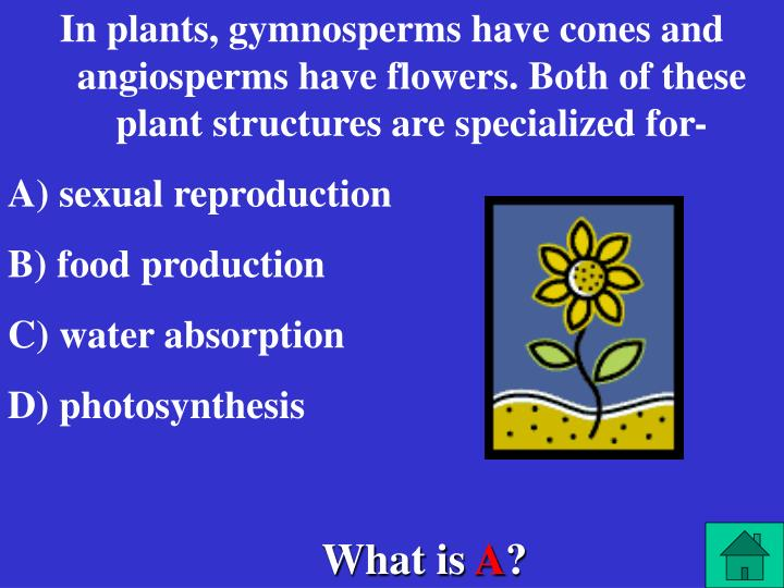 In plants, gymnosperms have cones and angiosperms have flowers. Both of these plant structures are specialized for-
