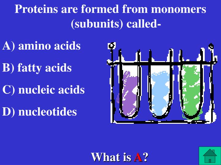 Proteins are formed from monomers (subunits) called-