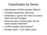 classification by genes