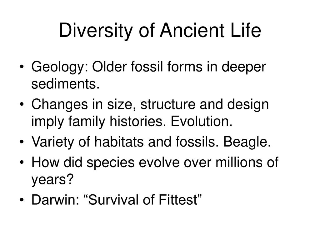 Diversity of Ancient Life