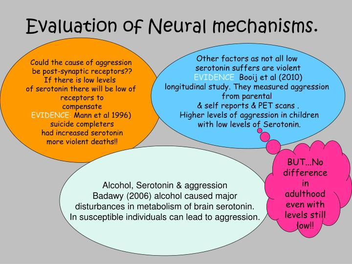 Evaluation of Neural mechanisms.