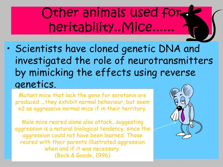 Other animals used for heritability..Mice......