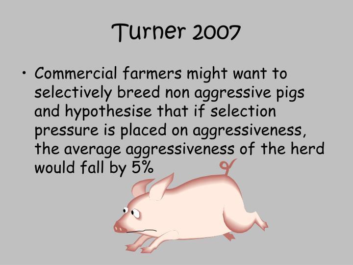 Turner 2007