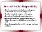 internal audit s responsibility