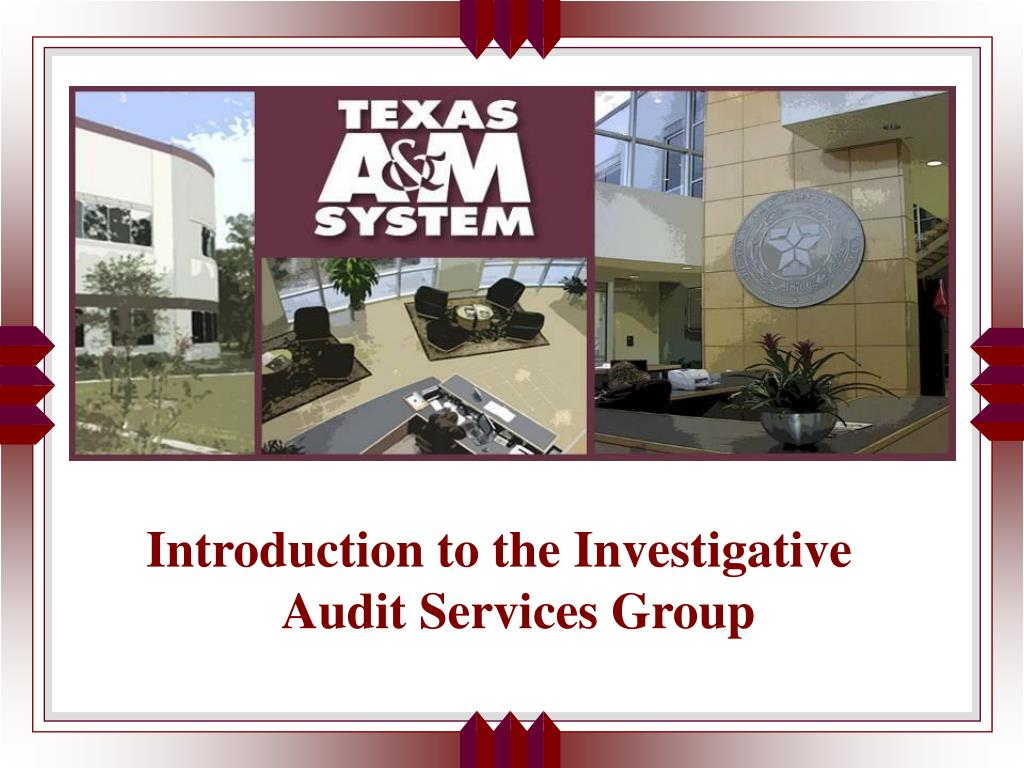 Introduction to the Investigative Audit Services Group