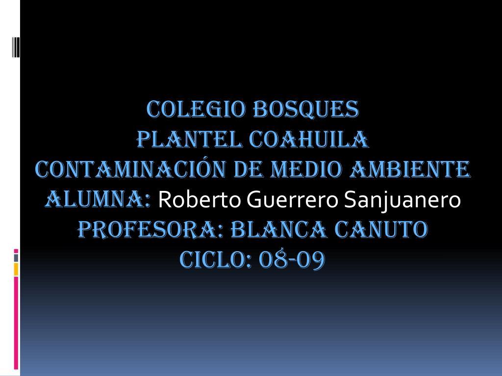 COLEGIO BOSQUES