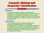 cowardin wetland and deepwater classification system6
