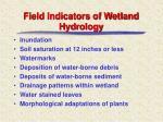 field indicators of wetland hydrology
