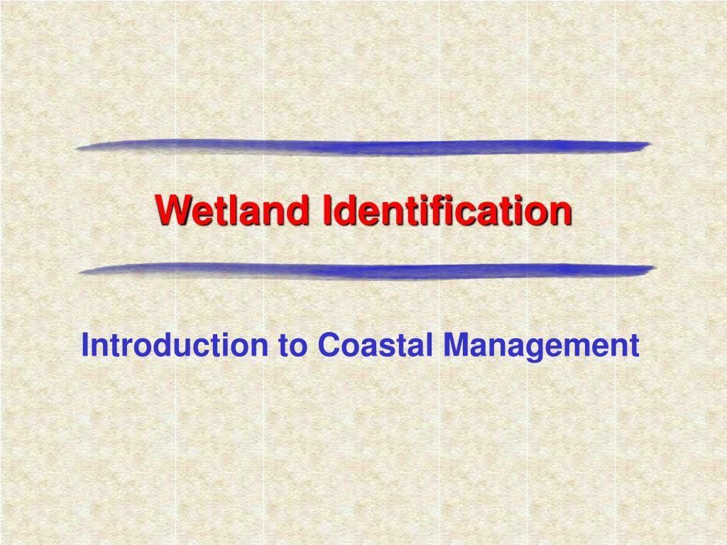 wetland identification