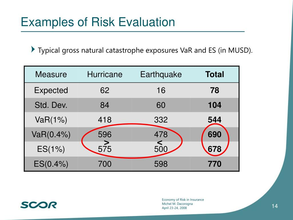 Examples of Risk Evaluation