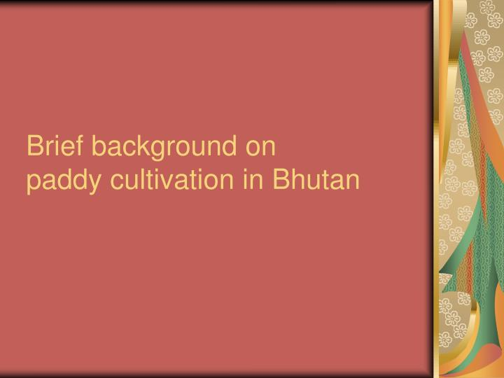 Brief background on paddy cultivation in bhutan