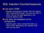 sql injection countermeasures45