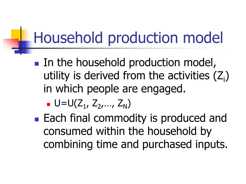 Household production model
