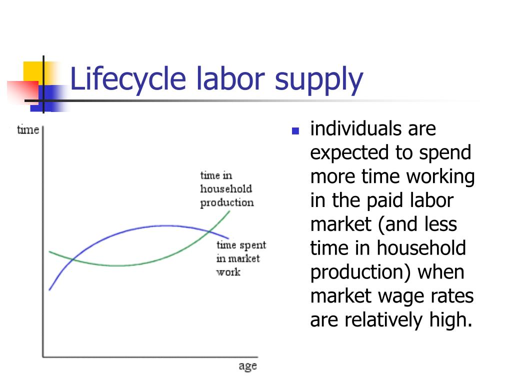 Lifecycle labor supply
