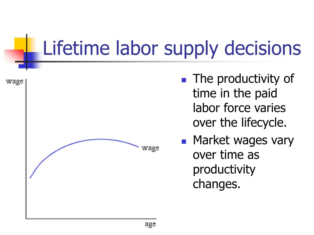 Lifetime labor supply decisions