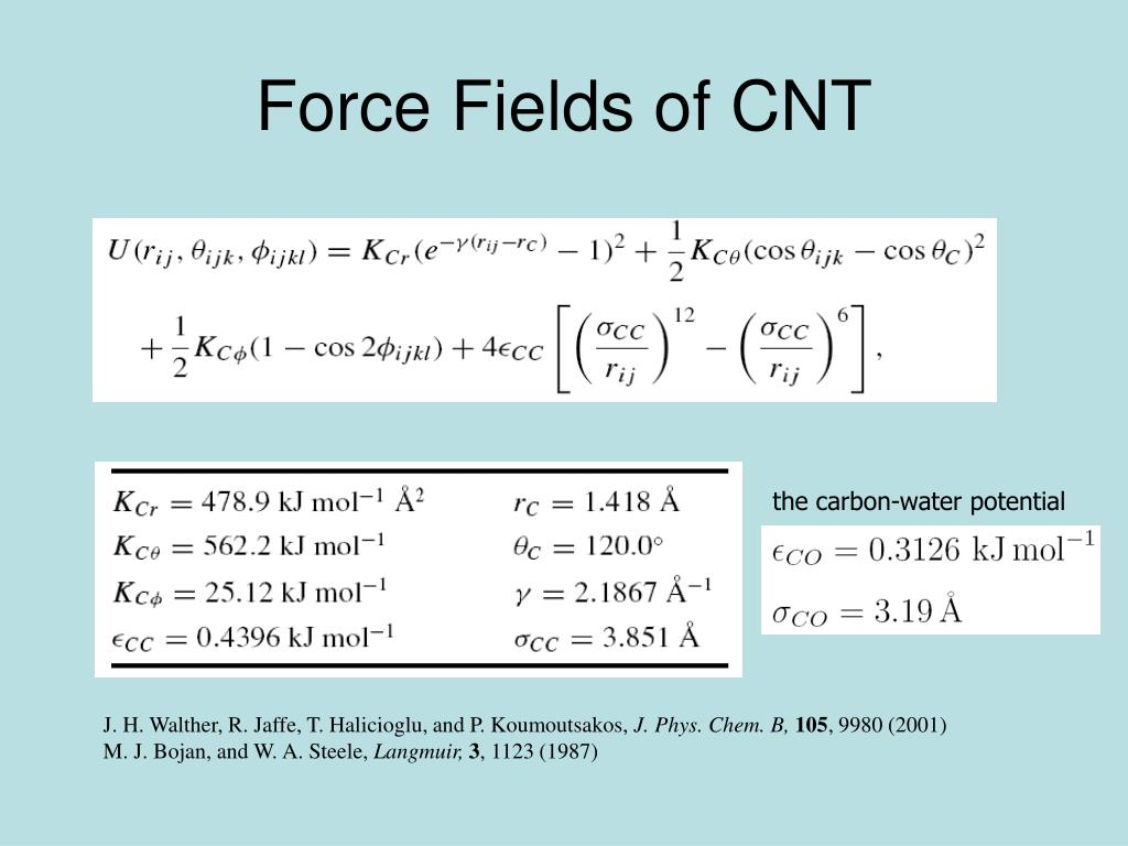 Force Fields of CNT